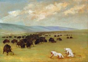 sioux hunting buffalo on the plains