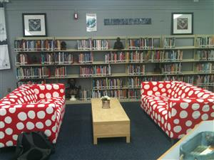 Library Couches